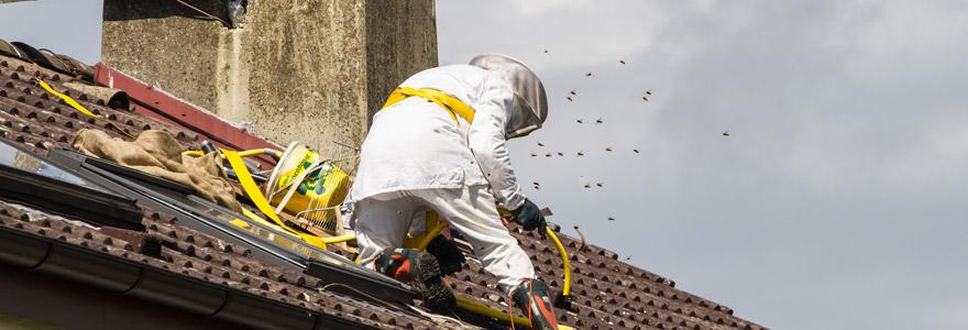 détruire un nid de guêpes